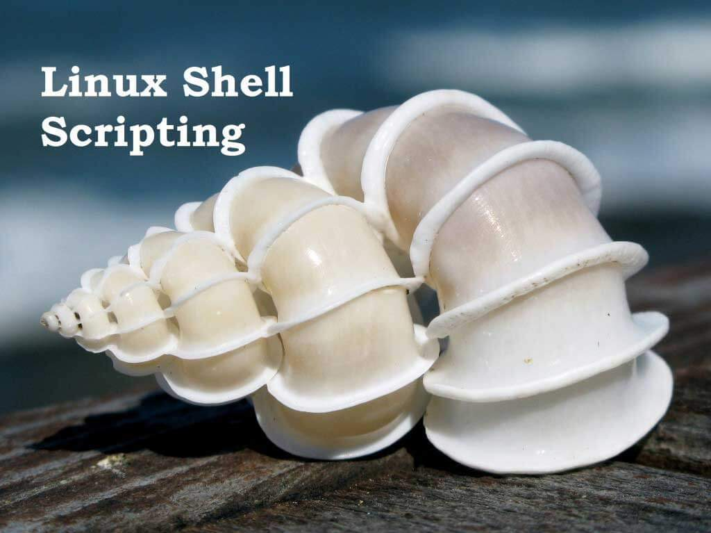 how to learn unix shell scripting