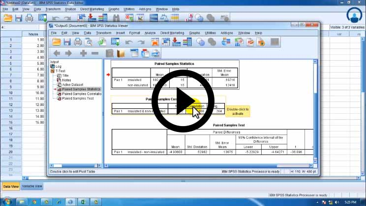 SPSS - Analyze Data for Statistical Analysis