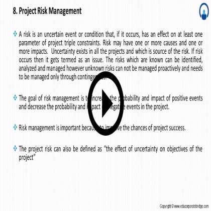 Project Management Primer