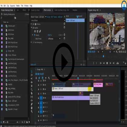 Adobe Premiere Pro Masterclass (Series #2) - Understanding Keyframe