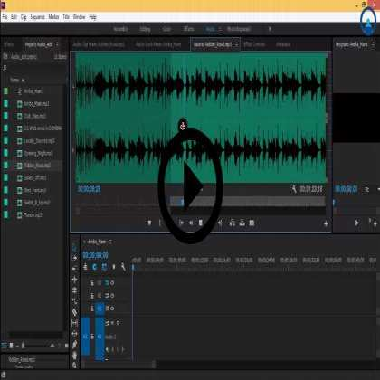 Adobe Premiere Pro Masterclass (Series #4) - Working with Audio