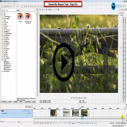 Pixelan Blur Sharpen Tools - Video Styling