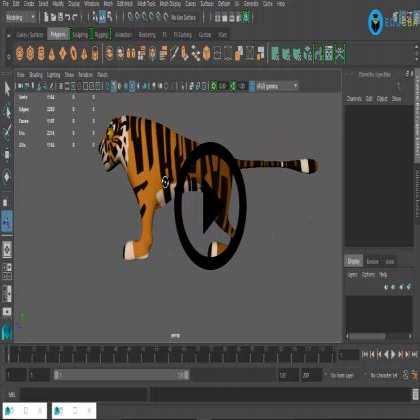 3D Modeling of Tiger