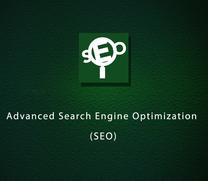Advanced Search Engine Optimization (SEO) - Expert - 5 Sessions
