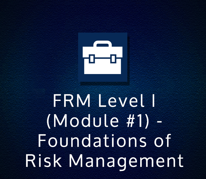 FRM Level I (Module-1) - Foundations of Risk Management | All Levels | 4 Sessions