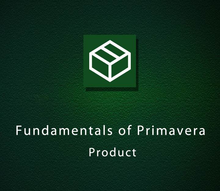 Fundamentals of Primavera Product - Beginner - 1 Session