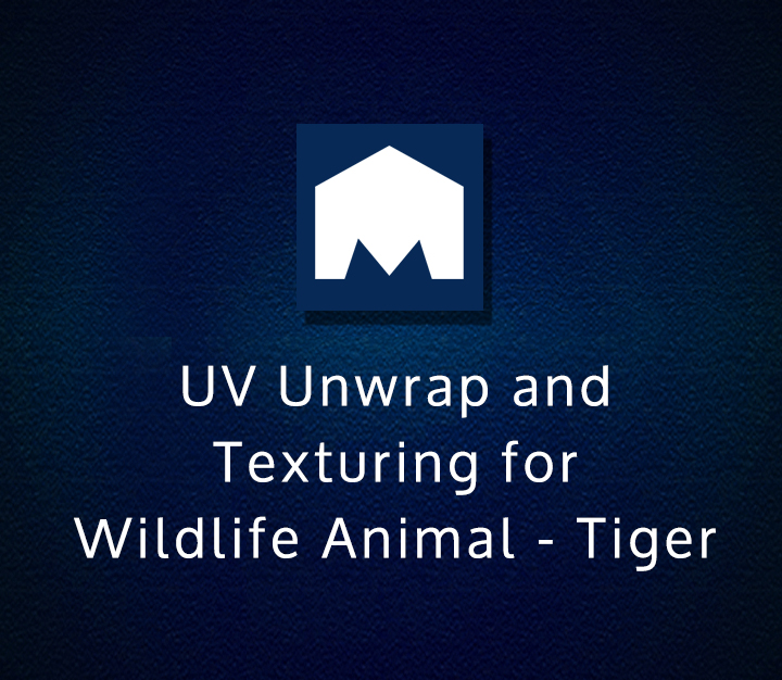 UV Unwrap and Texturing for Wildlife Animal - Tiger - Intermediate - 1 Session