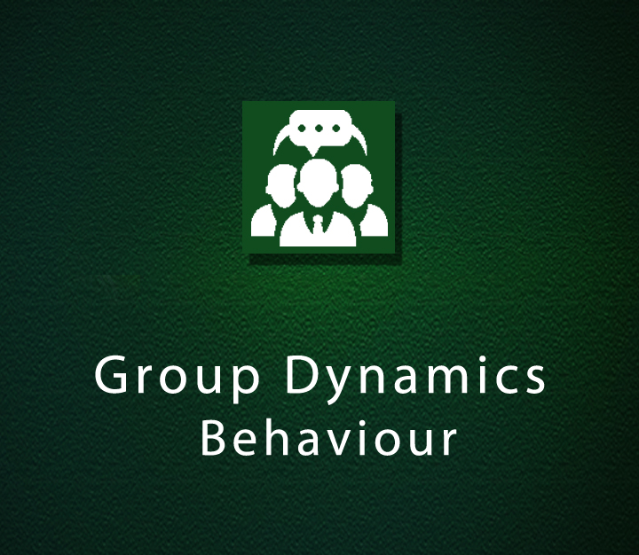 Group Dynamics- Behaviour - Beginner - 2 Sessions