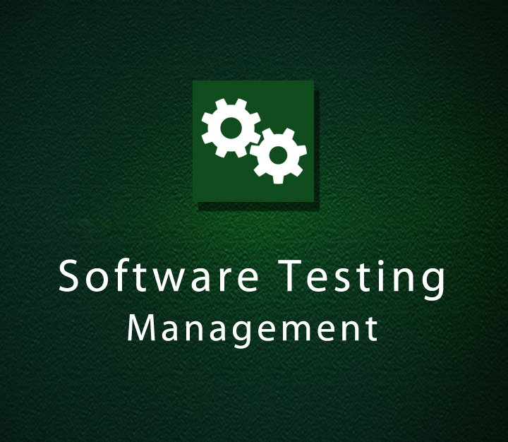 Software Testing Management - Intermediate - 4 Sessions